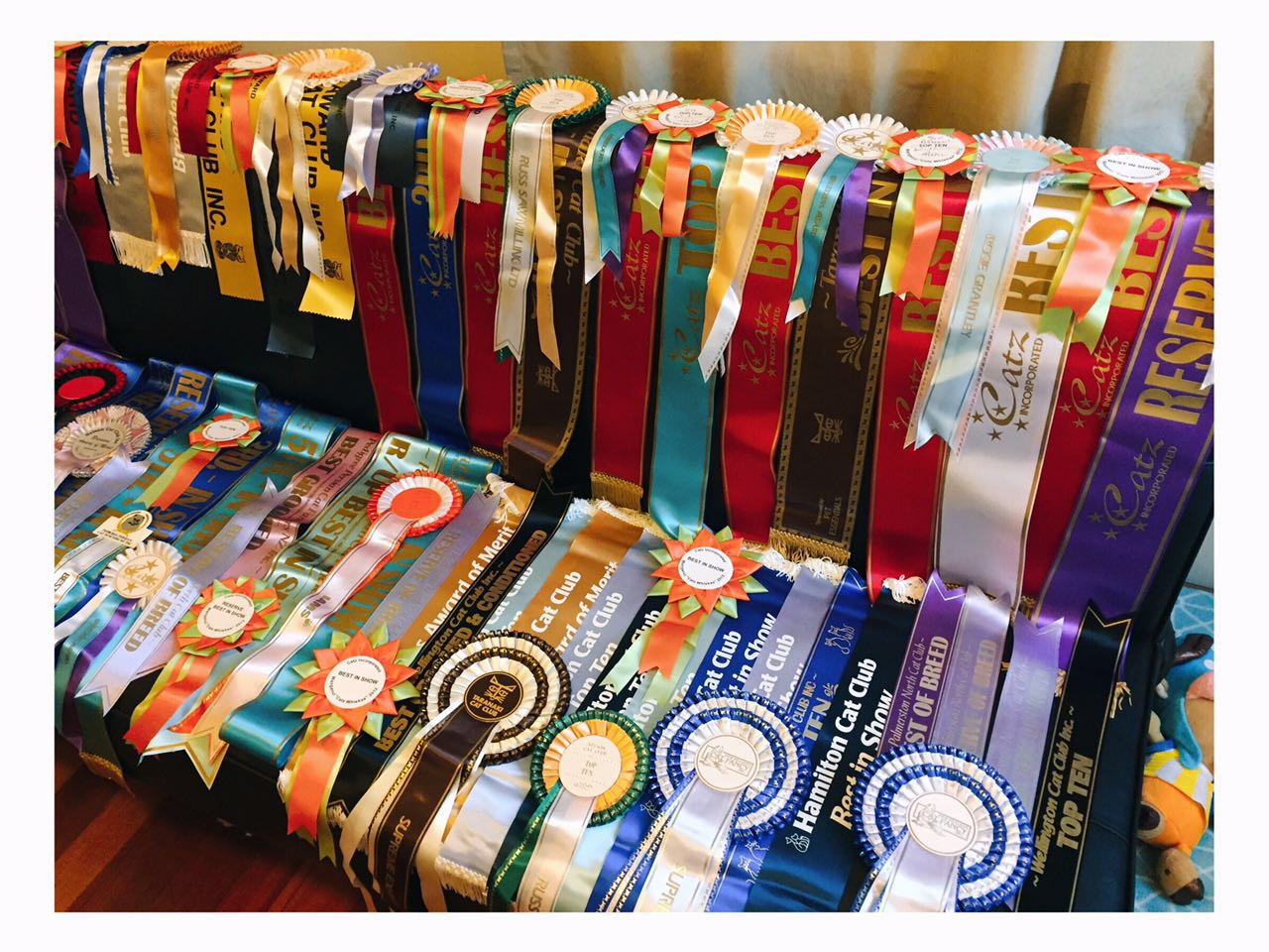 Rosettes and Ribbons