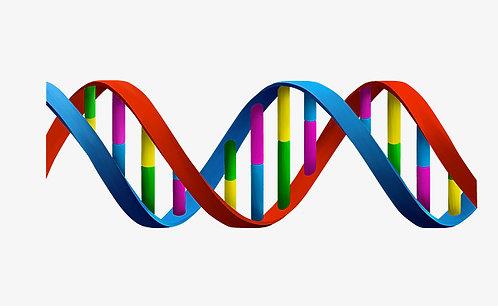 Color genetic test