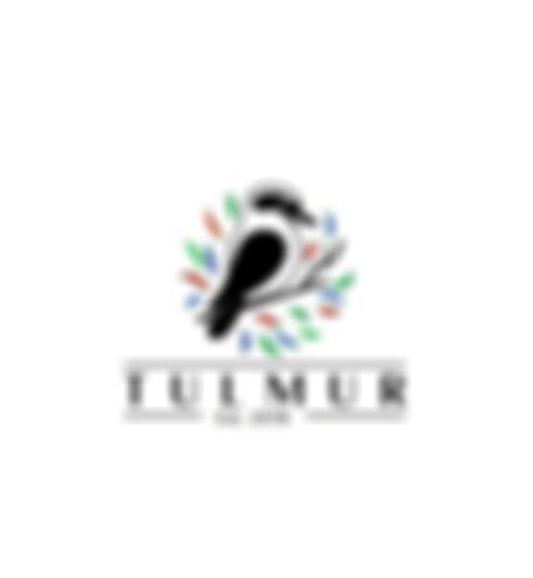 Wix Logo.jpg