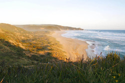 Johanna Beach