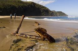 Wreck Beach on the Great Ocean Walk