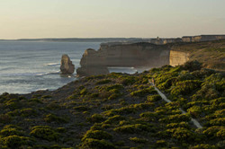 12 Apostles on the Great Ocean Walk