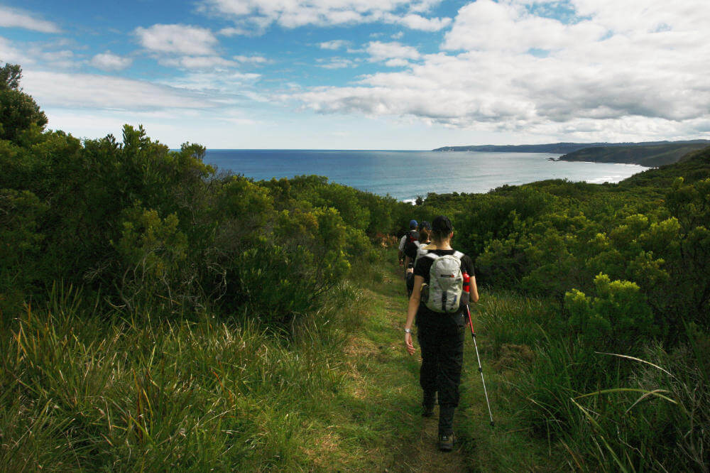 Women of Wander on the Great Ocean Walk