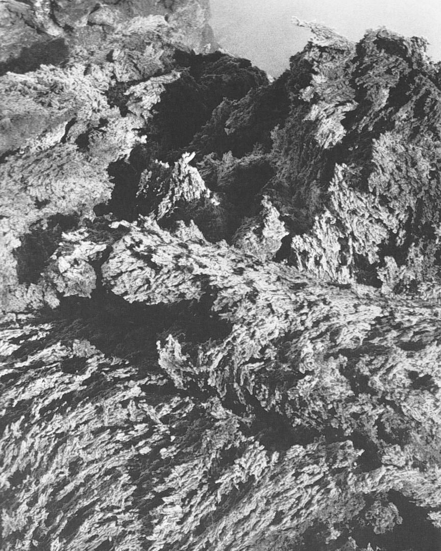 DA-9.jpg