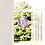 Thumbnail: Fenster & Glas Bild Loslassen