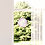 Thumbnail: FensterBild Erkenntnis