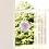 Thumbnail: Fenster & Glas Bild Achtsamkeit