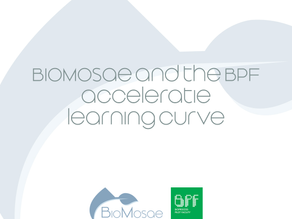 BioMosae and the BPF acceleratie learning curve