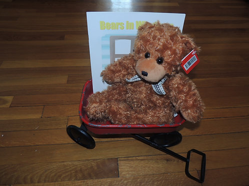 "Brown 15"" Teddy & Book"