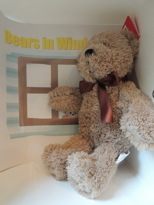 "10"" Pale brown Teddy bear plus a book"