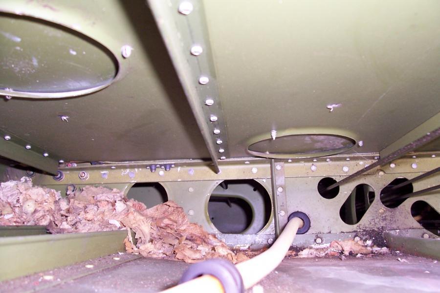 Sub-Floor Rat nest