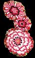 chanter Fleur01.png