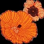 Spektacle Fleur.png