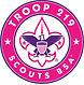 Troop219_LogoScoutsBSA2.jpg