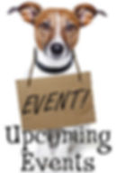 Upcoming Events at All Pets Considered. Image by Javier Brosch/Bogstock.com