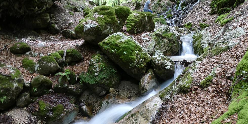 All'origine del Cosa - Da Guarcino alle sorgenti con guide AIGAE
