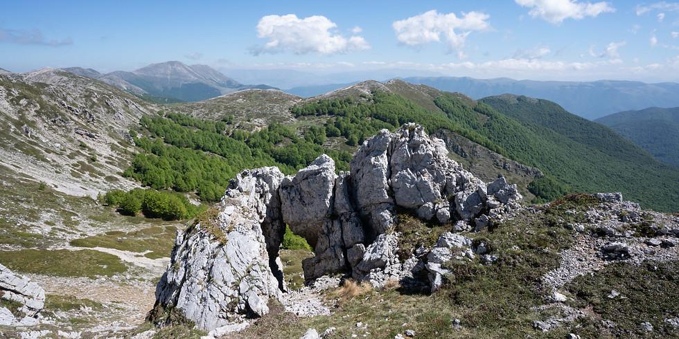 Monte Fanfilli (1952 m.) dalla Certosa di Trisulti