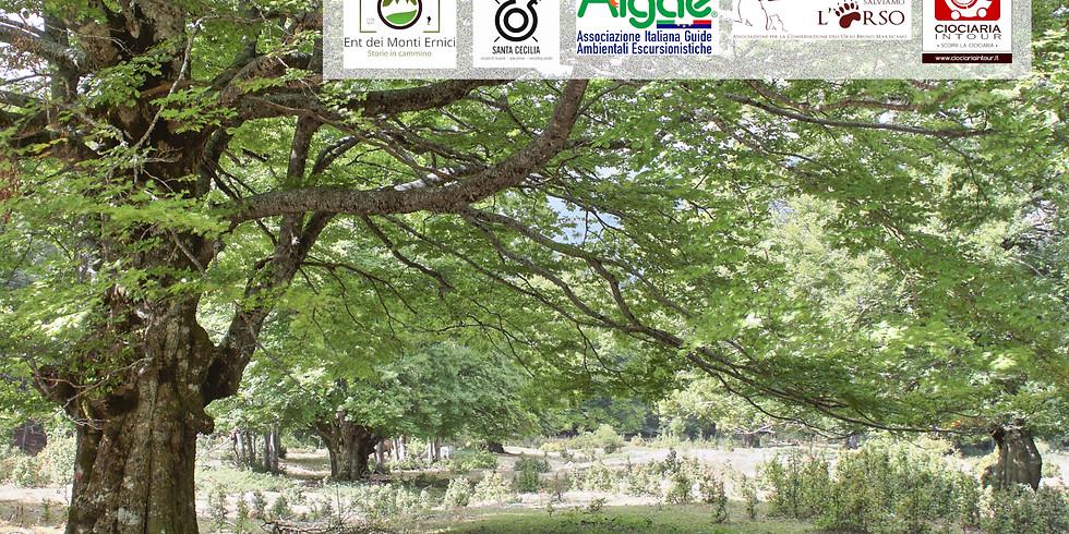Valle dell'Agnello - Sentieri con le note