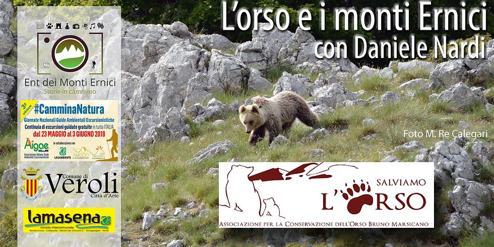 L'orso e i monti Ernici, con l'alpinista Daniele Nardi