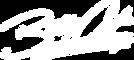 BA_logo_white.png
