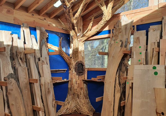 Our lovely Timber Tree by Douglas Birley of Alba Woodcrafts