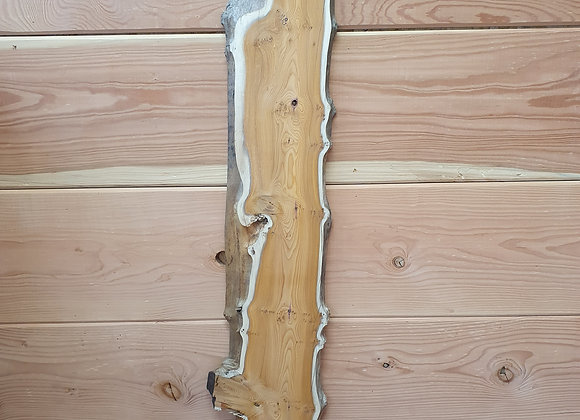 Natural edge Yew *Hold for pickup