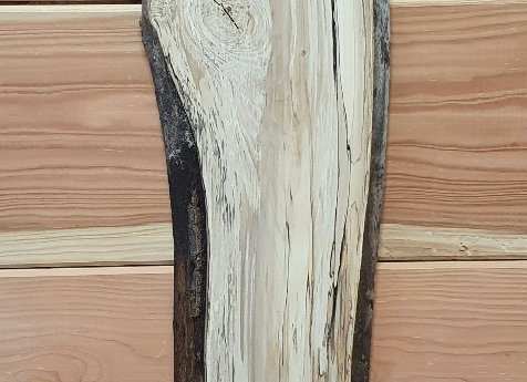 Live edge Spalted Beech
