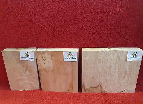 Chunky Sycamore x3 offcuts