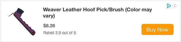 hoof-pick.jpg
