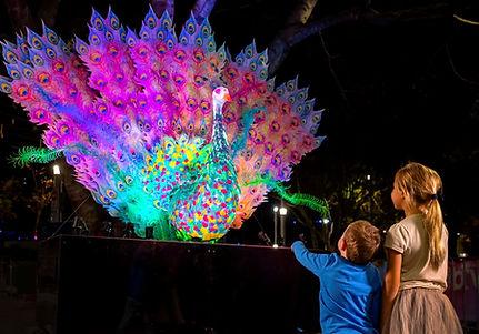 festival of lights peacock 7.JPG