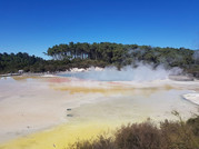 Waiotapu Geothermal landscape