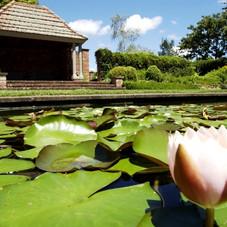 Garden_-_English_-_001-614x400.jpg