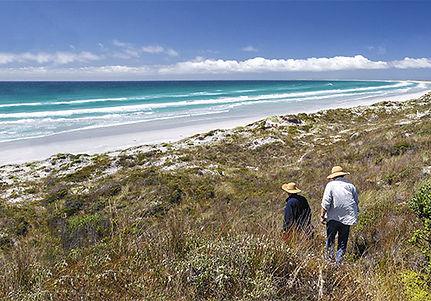 Chatham Islands blue beach and golden sand.jpg