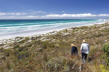 Chatham Islands blue beach and golden sa
