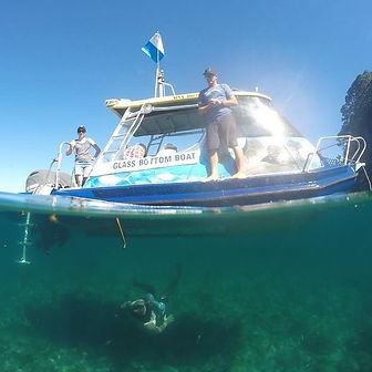 Glass Bottom Boat Tour Coromandel