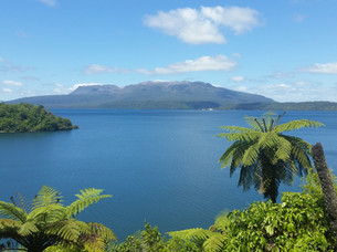 Lake Tarawera from viewpoint.jpg