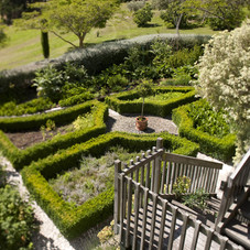 pegasus Bay winery garden.jpg