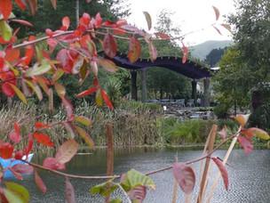 Sculpture Park 4.jpg