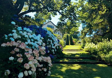 Tupare-Russell-Ave garden.jpg