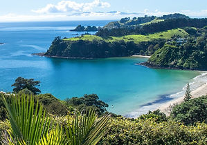 Waiheke Island Beach New Zealand