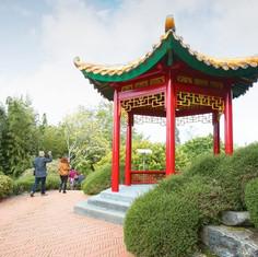 Garden_-_Chinese_-_007-600x400.jpg