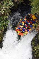 Shore excursion whitewater rafting from Tauranga Port