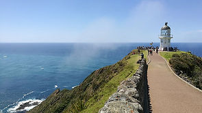 cape-reinga-path-to-lighthouse-hero.jpg