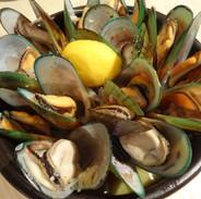 Mussels in bucket.jpg