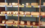 Cheese cheese glorious cheese