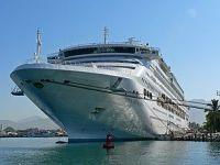 Cruise ship shore excursions Tauranga