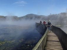 Rotorua cycling tour. Cruise Tours Tauranga
