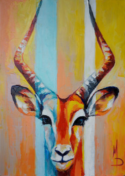 Импала / antelope impala