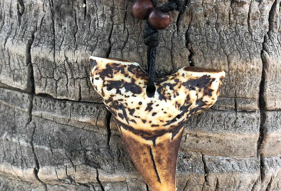 Tiger Shark Tooth Necklace Made in Fiji