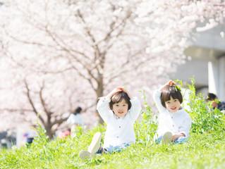 可愛い男の子達 横浜市都筑区 桜撮影